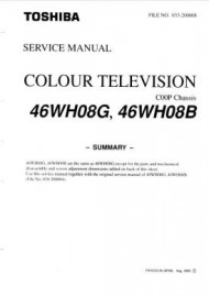 46WH08G Service Manual